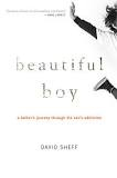Beautiful Boy - Top Rated Book About Drug Addiction