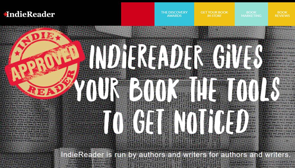IndieReader.com Teenage Degenerate Interview