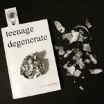 Teenage Degenerate Book Review