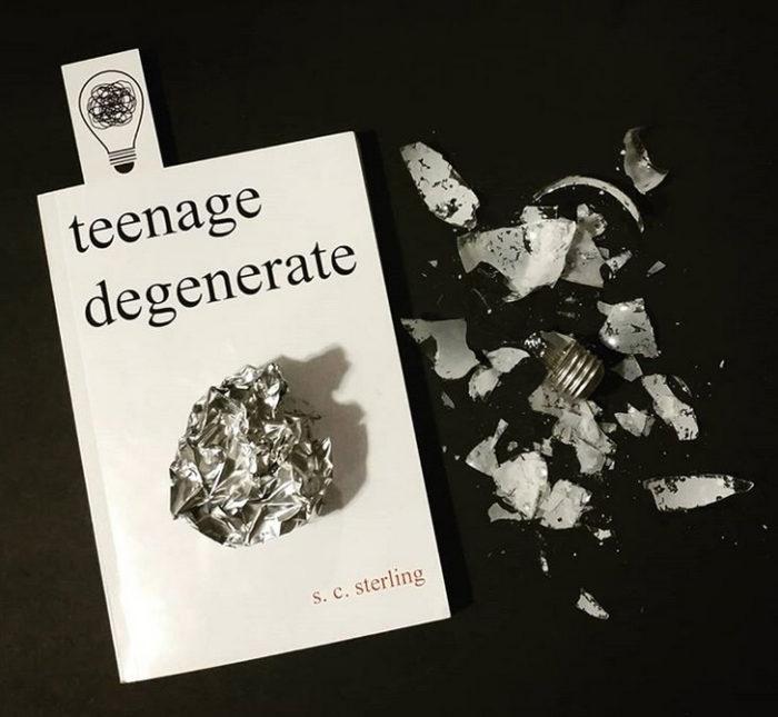 Teenage Degenerate Book Review
